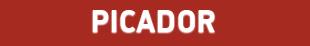 Picador Southampton logo