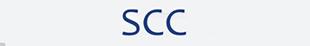 Severnside Car Company logo