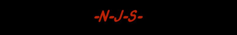 NJS Motor Vehicle Services Logo